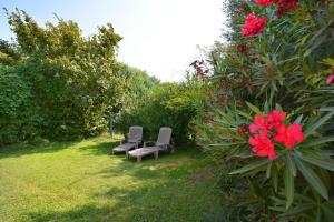 A garden outside Gîte Des Jonquiers