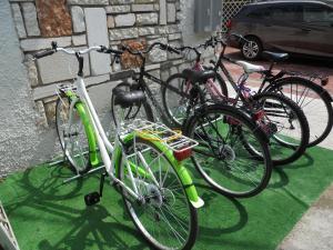 Jízda na kole v ubytování B&B Villa Flora nebo okolí