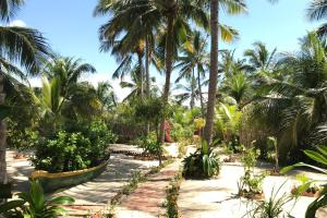 Um jardim em Pousada Espaco Zen