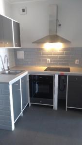 Kuchnia lub aneks kuchenny w obiekcie Mini Lux Apartment