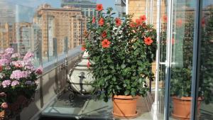Un balcón o terraza de Hotel Asteri