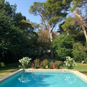 The swimming pool at or near Domaine de La Forçate
