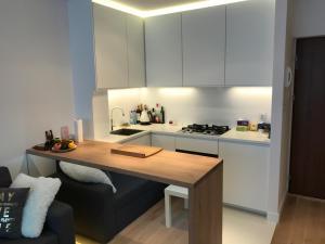 Kuchyň nebo kuchyňský kout v ubytování Spirit of Warsaw Apartment