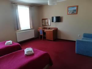 Телевизор и/или развлекательный центр в Hotel E-lektor