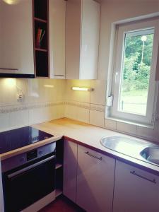 Kuchyň nebo kuchyňský kout v ubytování House Plitvice