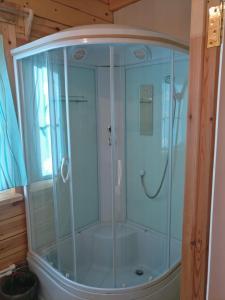 A bathroom at Viktoria