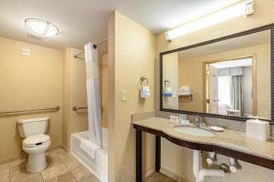 A bathroom at Hampton Inn & Suites Orlando-South Lake Buena Vista