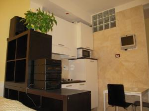 A kitchen or kitchenette at Studio Palestro