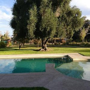 The swimming pool at or near Vieja Posada Hotel Histórico