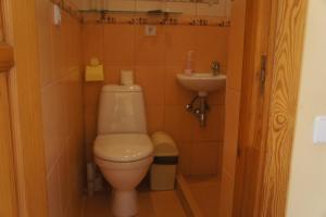 Vonios kambarys apgyvendinimo įstaigoje Aviatorvila