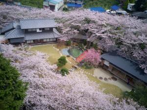 桜泉会館の鳥瞰図