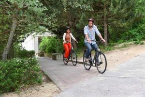 Vélo sur le terrain de l'établissement Vakantiedomein Hoge Duin ou dans les environs