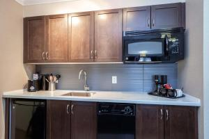 A kitchen or kitchenette at Sandman Hotel and Suites Abbotsford