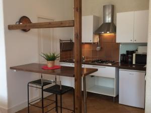A kitchen or kitchenette at Appartement Domaine de la Freslonnière