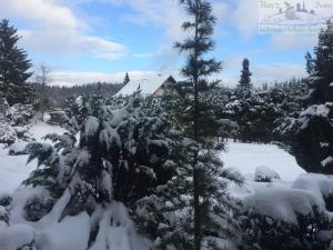 FeWo Eulennestchen-Harz im Winter
