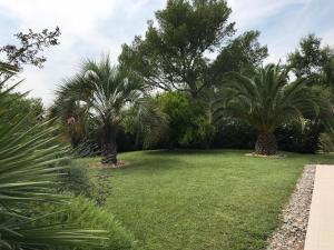 A garden outside Belle villa à Saint Raphaël dans clos privé