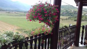 Balkon ili terasa u objektu Apartment Seoski Mir