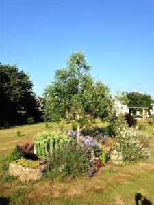 A garden outside Maison au centre de Camazen