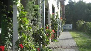 Ein Garten an der Unterkunft Schlossgarten Hotel am Park von Sanssouci