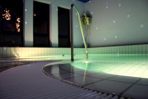 Der Swimmingpool an oder in der Nähe von Akzent Hotel Roter Löwe