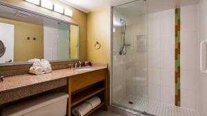 A bathroom at Best Western Premier Toronto Airport Carlingview Hotel