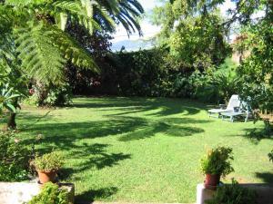 A garden outside Quinta Sao Goncalo