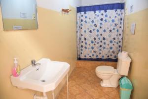 A bathroom at Brabant Hostal