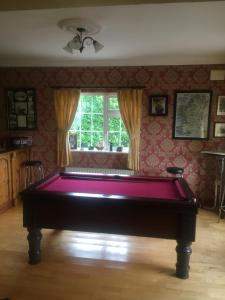 Deerpark Manor Bed and Breakfast tesisinde bir bilardo masası