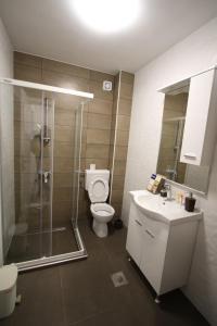 A bathroom at Stan na dan Brcko