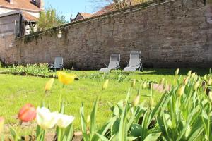 A garden outside Le Napoléon
