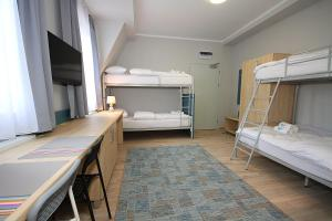 A bunk bed or bunk beds in a room at Willa Park Apartamenty