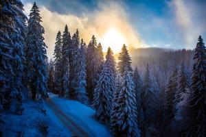 Sunny Hills Ski&Wellness during the winter