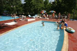 The swimming pool at or near Viking Hotel