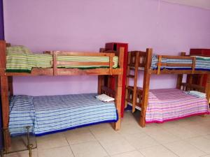 A bunk bed or bunk beds in a room at Olga Querida B&B Hostal