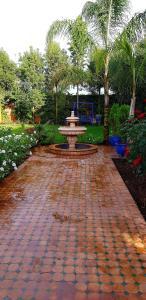 A garden outside Villa mille et une nuits