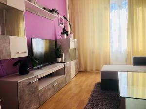 Телевизор и/или развлекательный центр в Apartment Prague