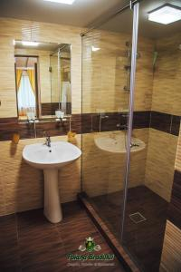 A bathroom at Poiana Bradului