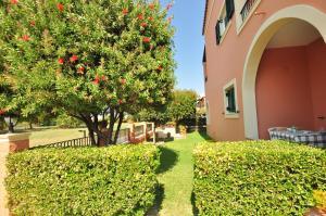 Κήπος έξω από το Elena Apartments Corfu