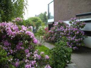 Ein Garten an der Unterkunft Am Hallenbad Hotel garni