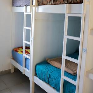Ein Etagenbett oder Etagenbetten in einem Zimmer der Unterkunft Lost and Found Jungle Hostel