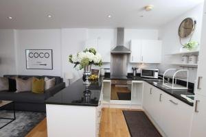 A kitchen or kitchenette at Aisiki Apartments at Clarendon Lofts