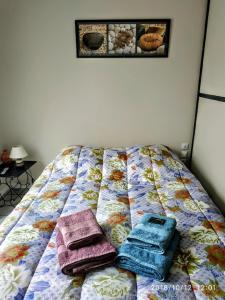 A bed or beds in a room at tranquillité & indépendance au coeur historique