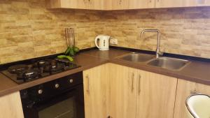 A kitchen or kitchenette at Apartment Rustaveli 1