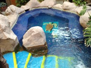The swimming pool at or near Hotel el Fuerte