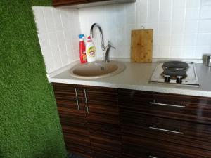 A kitchen or kitchenette at Apartments on Velizhskaya ulitsa