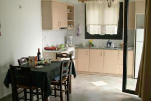 A kitchen or kitchenette at Villa Platanaki