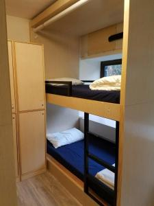 A bunk bed or bunk beds in a room at The Cove Hostel - Sea Ranch