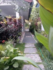 Ein Garten an der Unterkunft Maharani Homestay
