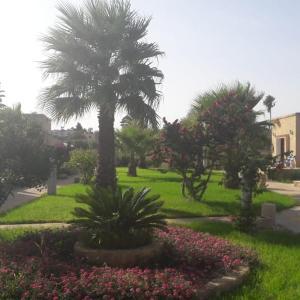 A garden outside Glaro Garden Hotel