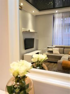 A television and/or entertainment center at Copernicus Dream Apartment